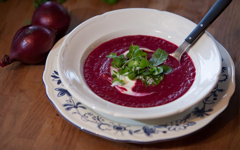 Suppe aus gedünsteten roten Beten