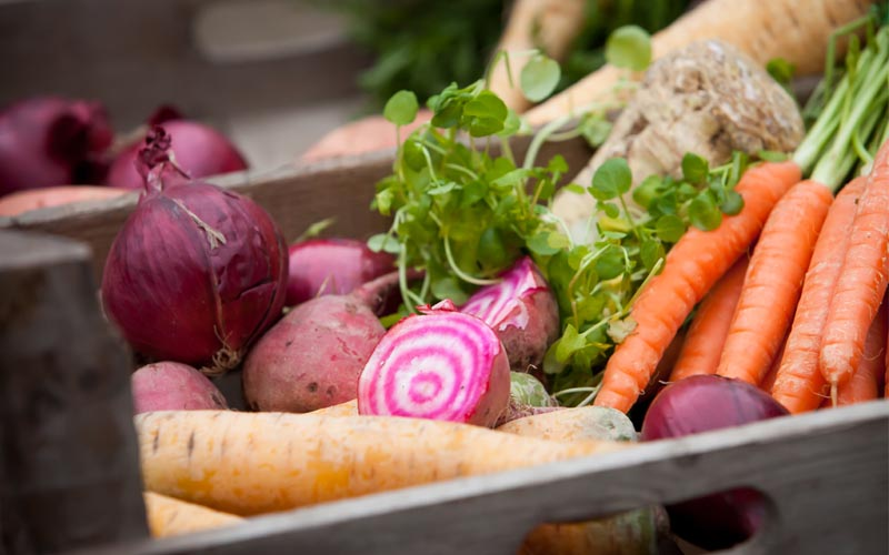 Healthy living with winter vegetables