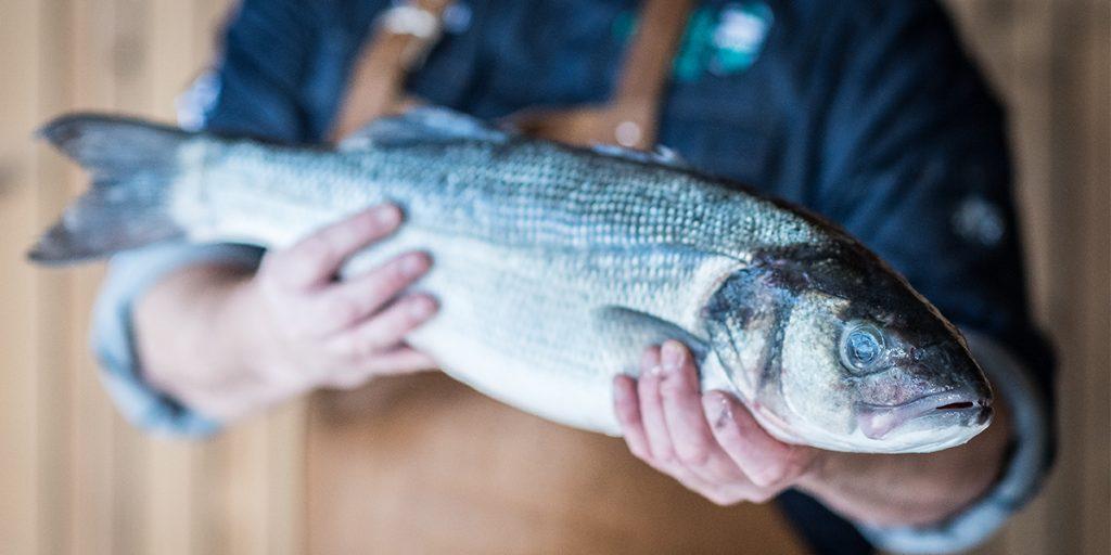 La température à cœur du poisson