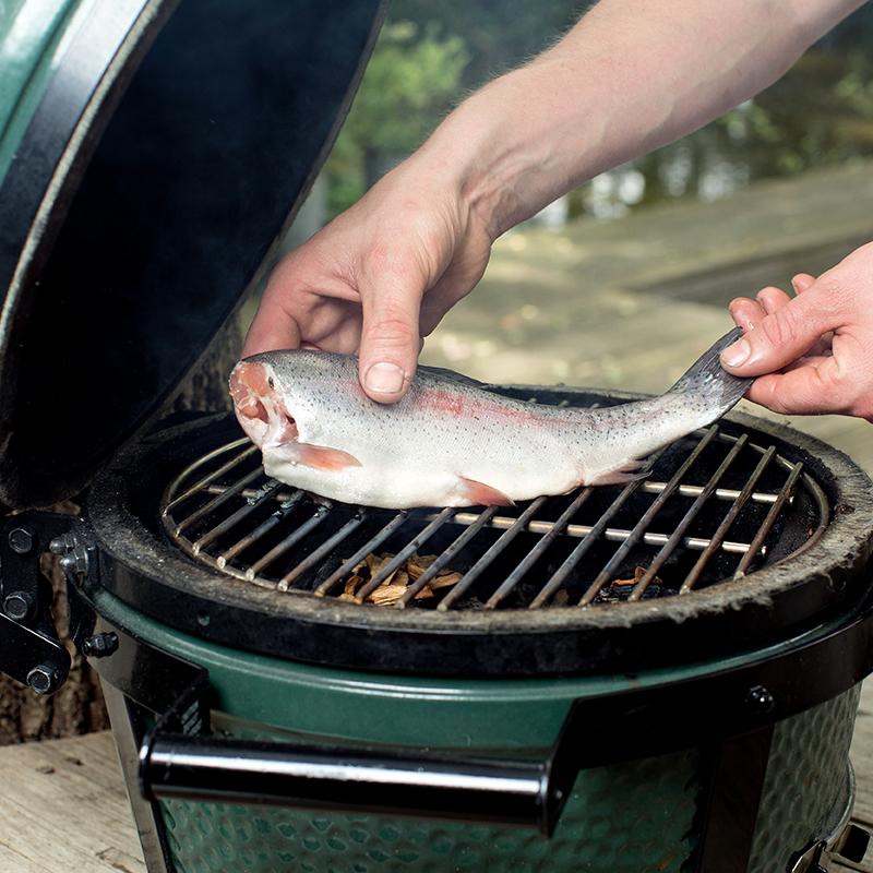 Smoked salmon trout